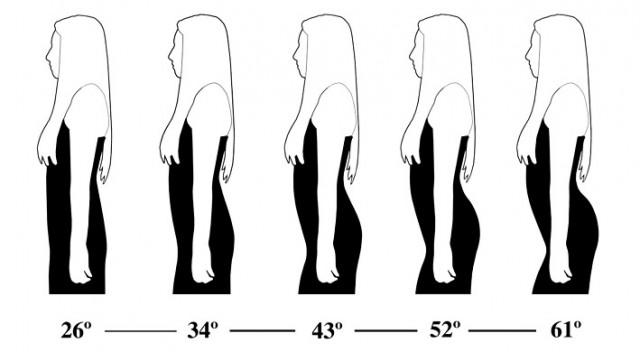 허리와 엉덩이가 이루는 각도인 요부만곡을 다르게 해 남성 실험참가자들의 선호도를 조사했다. - 진화와 인간 행동(Evolution and Human Behavior) 제공